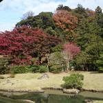 建長寺の庭
