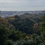 建長寺裏山からの鎌倉市街地